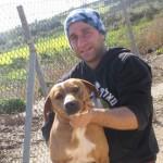 המדריך לבחירת מאלף כלבים בתל אביב