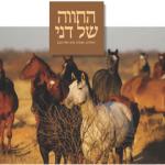 מדריך לבחירת חוות סוסים לרכיבה טיפולית