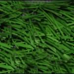 מדריך קניית פרקטים, דשא סינטטי וטפטים