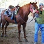 מדריך למציאת חוות סוסים לרכיבה טיפולית בשפלה