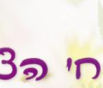 המדריך לבחירת פרחים בעכו