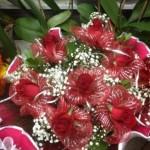 מדריך לבחירת פרחים נתניה