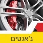 מדריך לבחירת צמיגים לרכב בזול
